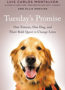 Tuesday's Promise Cover